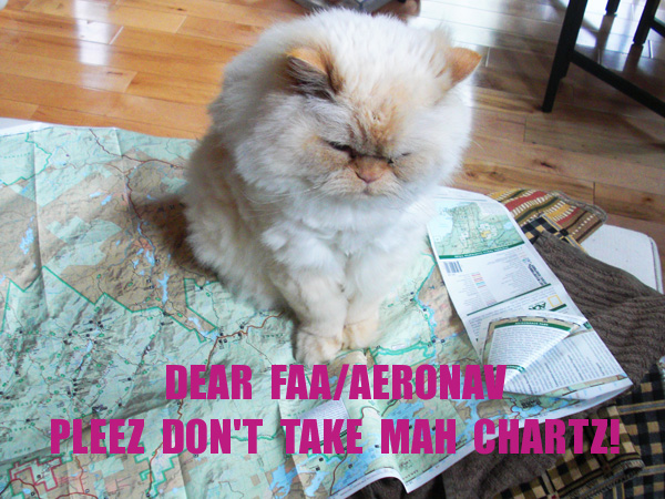 Pleez don't take mah charts!